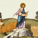 «ВЫШЕЛ СЕЯТЕЛЬ СЕЯТЬ…» (ЛК. 8: 5–15)