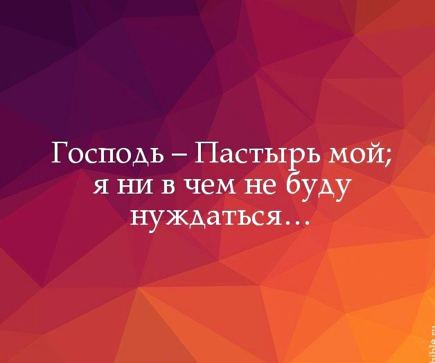 IMG_20181208_130715